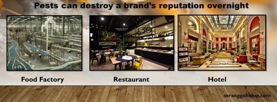 Reputation (2)